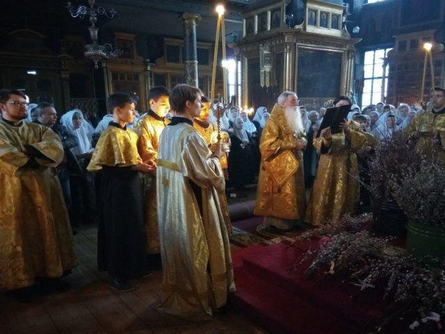Праздник Входа Господня во Иеросалим