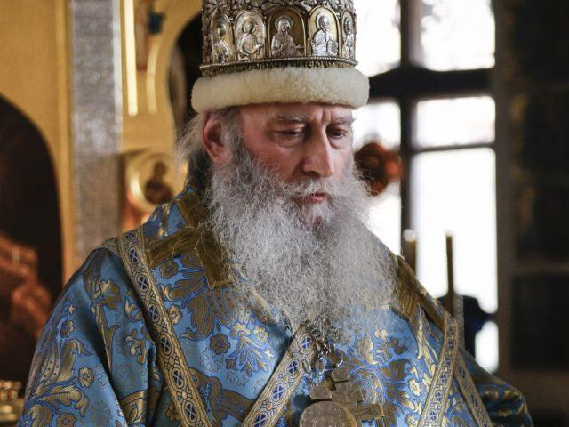 Рожественское поздравление архиепископа Донского и Кавказского Зосимы